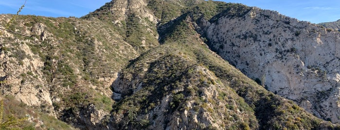 Angeles National Forest is one of National Recreation Areas.