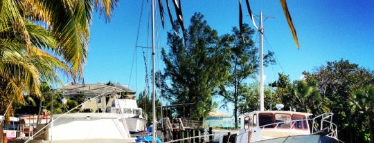Stuart's Cove Dive Bahamas is one of Año Salvaje.