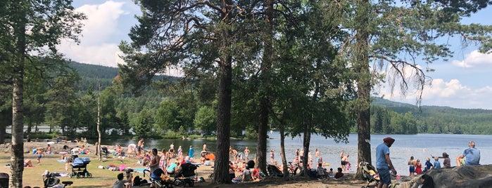 Sognsvannstranden is one of Oslo.