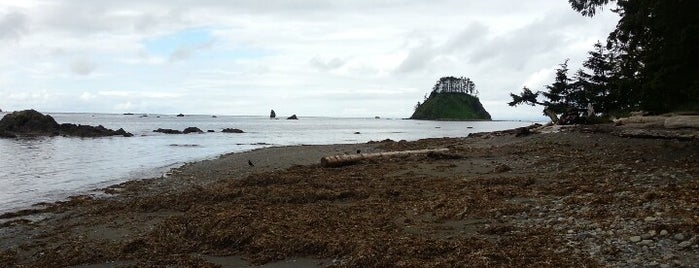Cape Alava is one of Camping/Hiking in Western Washington.