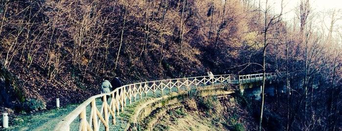Sacro Monte di Crea is one of Posti che sono piaciuti a Davide.