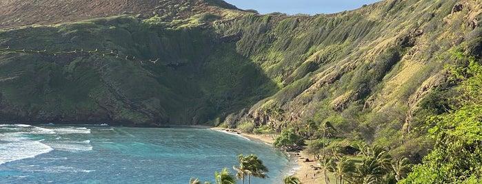 Hanauma Bay is one of Hawaii.
