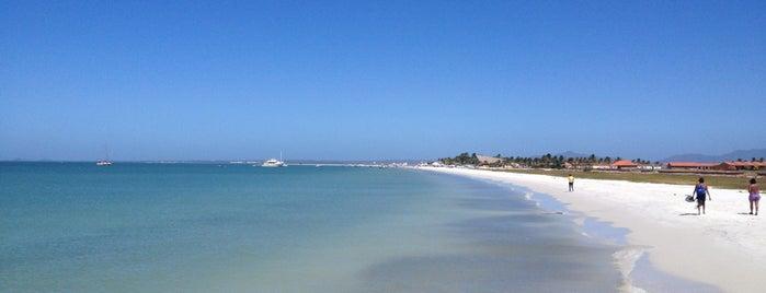 Isla de Coche is one of Lugares favoritos de Nicolas.