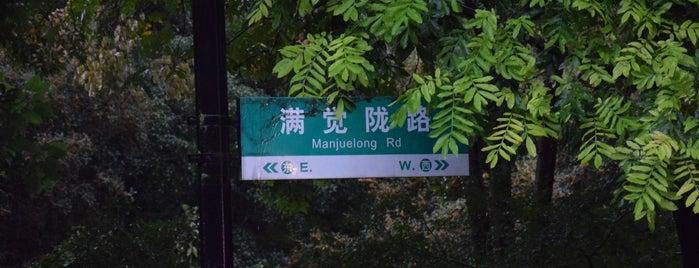 满觉陇路 is one of Tempat yang Disukai Keda.