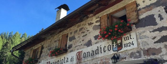 Malga Venegiota is one of Orte, die alessandro gefallen.