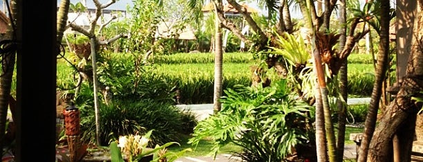 Bebek Tepi Sawah Restaurant & Villas is one of Ubud.