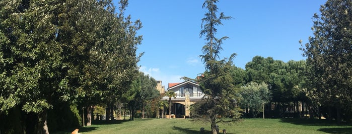 Grandma's Wonderland is one of Şehirden Kaçmak İçin.