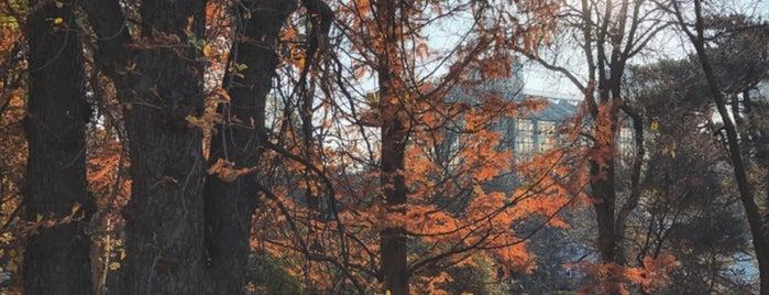 Ботанічний сад ім. О. Фоміна / O. Fomin Botanical Garden is one of สถานที่ที่ A ถูกใจ.
