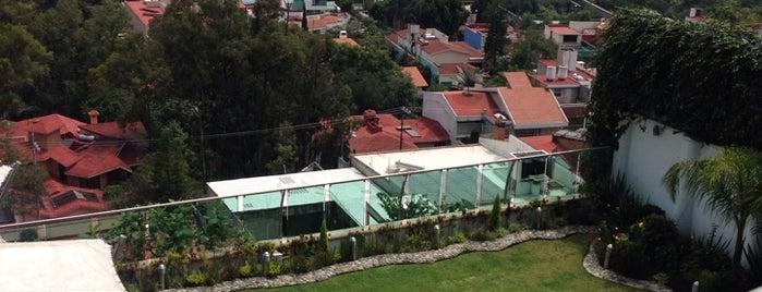Mochi's Palace is one of Orte, die Carlos gefallen.