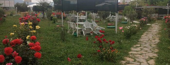 Ali Baba'nın Çiftliği is one of İzmir.