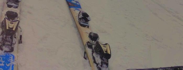 Ski Egypt is one of Mero's Cairo Trip.