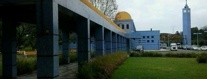 Terminal Rodoviário de Poços de Caldas is one of Poços de Caldas - MG.