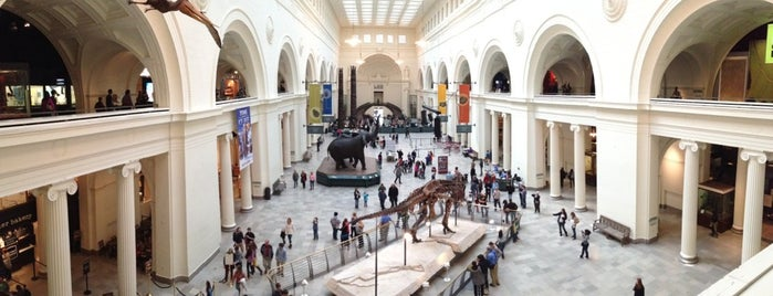 The Field Museum is one of Sil'in Beğendiği Mekanlar.