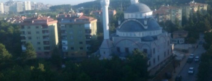 Çamlık Şehitler Camii is one of Anadolu | Spiritüel Merkezler.