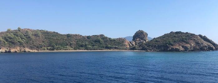Tavşan Adası is one of Fethiye.
