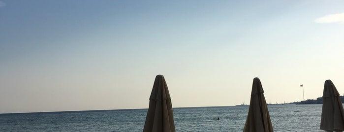 Tren Beach Club is one of Tempat yang Disukai Merve.