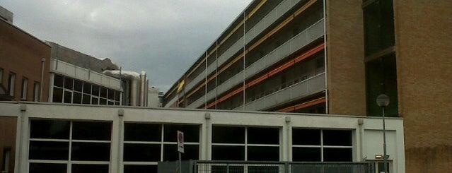 Policlinico Universitario (Azienda Ospedaliera di Padova) is one of Tempat yang Disukai Manuela.