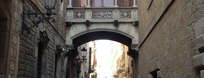 Quartier Gotico is one of barca 🇪🇸.