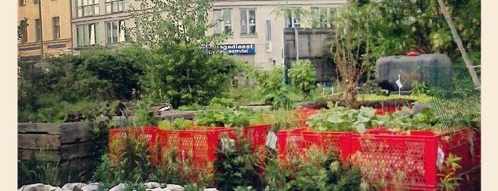 Prinzessinnengärten is one of X-Berg für Fortgeschrittene.