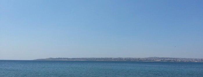 Büyükçekmece Plajı is one of Veysel 님이 좋아한 장소.