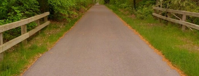 Cape Cod Rail Trail is one of Cape cod.