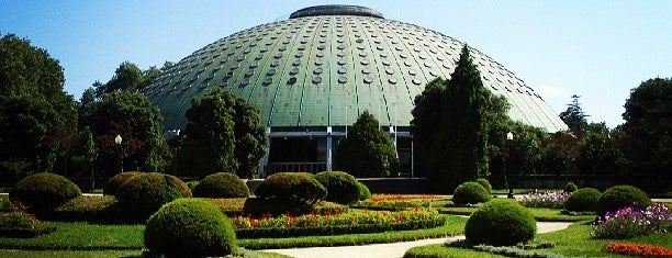 Jardins do Palácio de Cristal is one of Locais salvos de Ana.