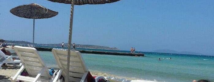 Miplaya Beach & Club is one of Posti salvati di Yalin.