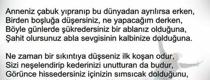Özledim Çok is one of สถานที่ที่ dderyam1907💛💙 ถูกใจ.