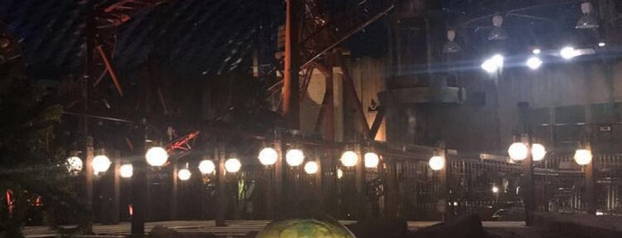 IMG Worlds of Adventure is one of Kato : понравившиеся места.