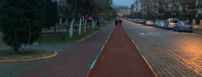 Gazi Parkı Koşu Yolu is one of ✨💫GöZde💫✨ : понравившиеся места.