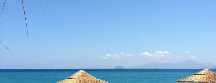 Carda Beach Hotel is one of Lugares favoritos de Mitya.