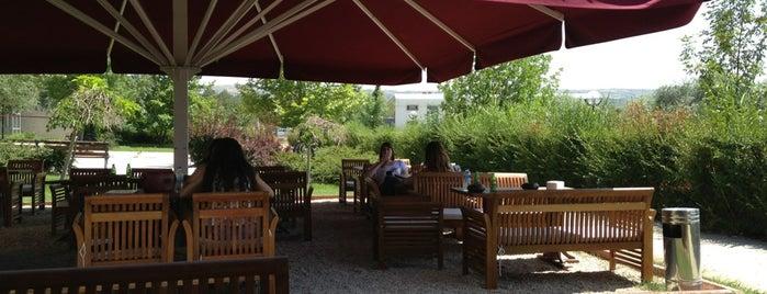 Bolonez Cafe is one of Lieux qui ont plu à Özlem.