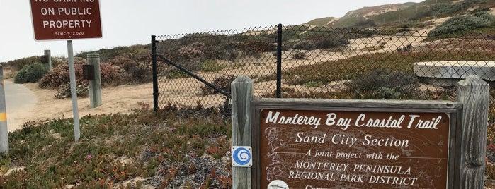 Monterey Bay Coastal Trail is one of HWY1: Santa Cruz to Monterey/Carmel.