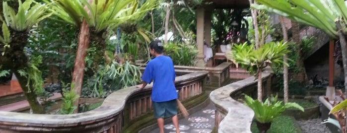 Ketut's Place is one of Enjoy Bali Ubud.