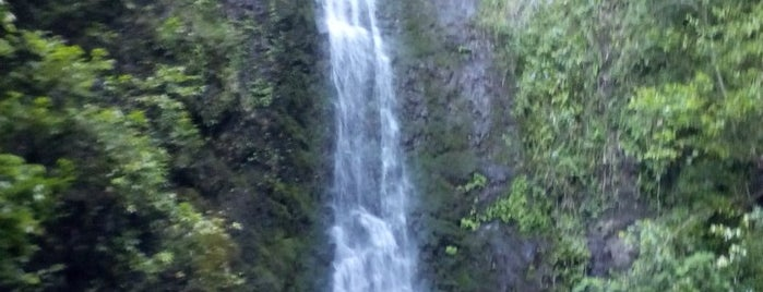 Lulumahu Falls is one of Best Oahu Hikes.