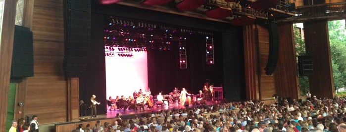 Wolf Trap National Park for the Performing Arts (Filene Center) is one of DC Metro.
