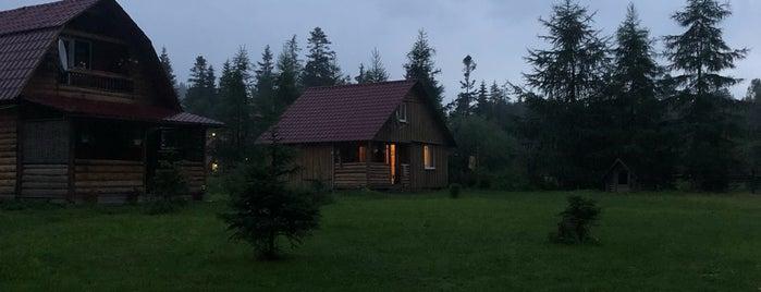 Керманич is one of Ворохта.