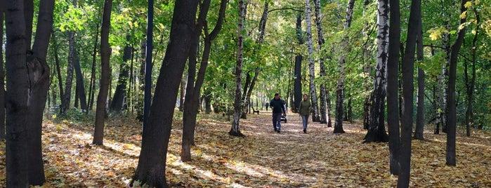 Neskuchny Garden is one of Tempat yang Disukai Stanislav.