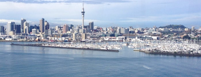 Viaduct Harbour is one of Auckland.