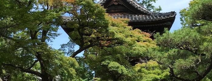 蓬莱山 徳源寺 is one of Nagoya Temples.