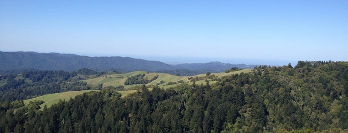 Skyline Ridge Open Space Preserve is one of Lieux qui ont plu à Alden.