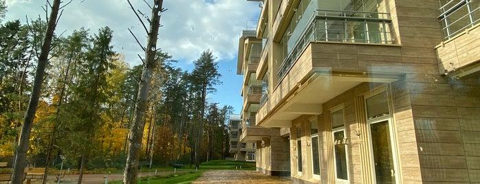 Первая Линия. Health Care Resort is one of СПб. Спа.