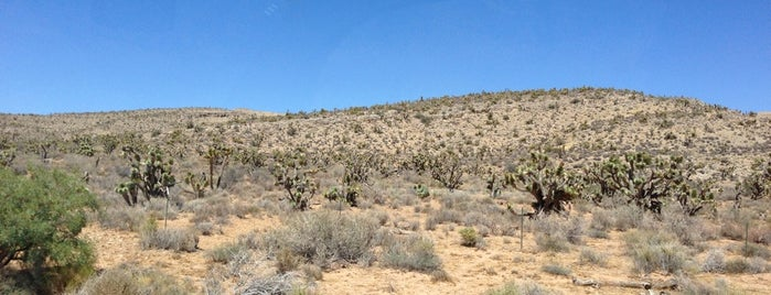 Spring Mountain Ranch State Park is one of Las Vegas.