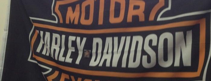 Краснодар Harley-Davidson is one of Posti che sono piaciuti a Евгений.