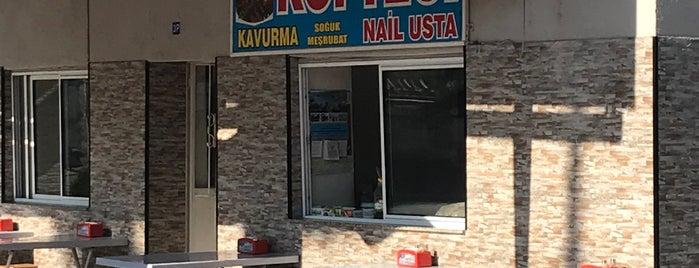 köfteci nail is one of EGE Güney.