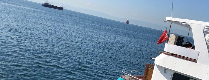 Kartal - Adalar İskelesi is one of Locais curtidos por Canan.