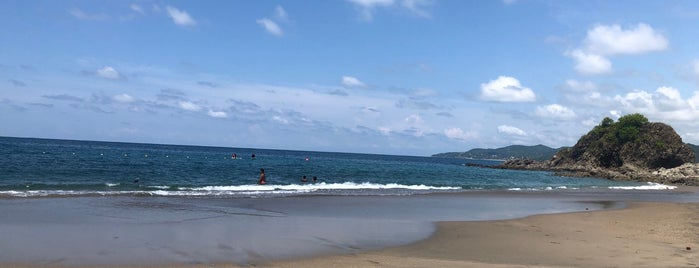 Playa Los muertos is one of Denisさんのお気に入りスポット.