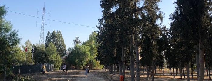 Kıbrıs Türk - Rum Sınırı Temas Hattı is one of Lieux qui ont plu à UMUT.