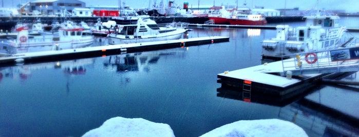 Porto de Reiquiavique is one of Iceland.
