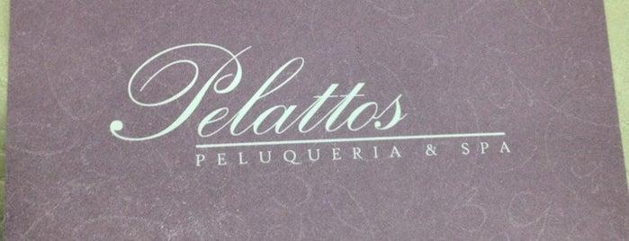 Pelattos Peluqueria is one of Tempat yang Disukai Alicia.